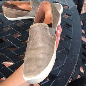 Frye Shoes - Frye sneakers